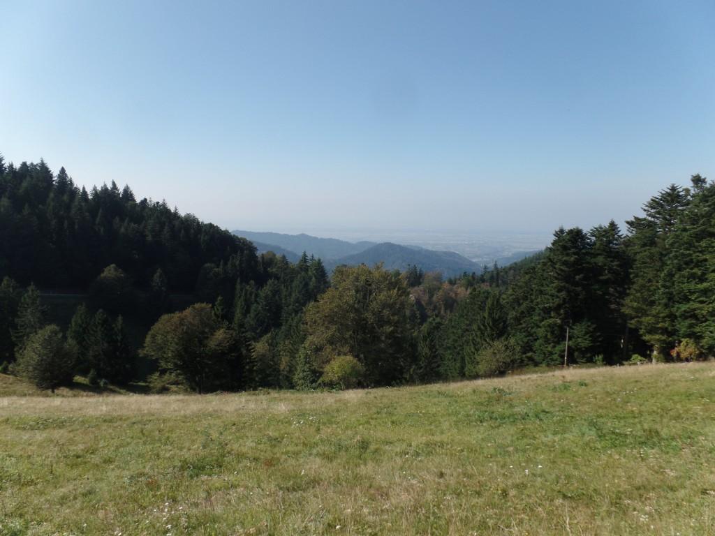 Blick Richtung Münstertal
