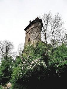 Burg Sponneck
