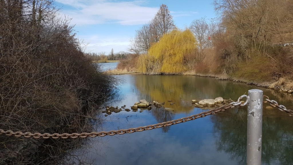 Nebenlauf  vom Rhein